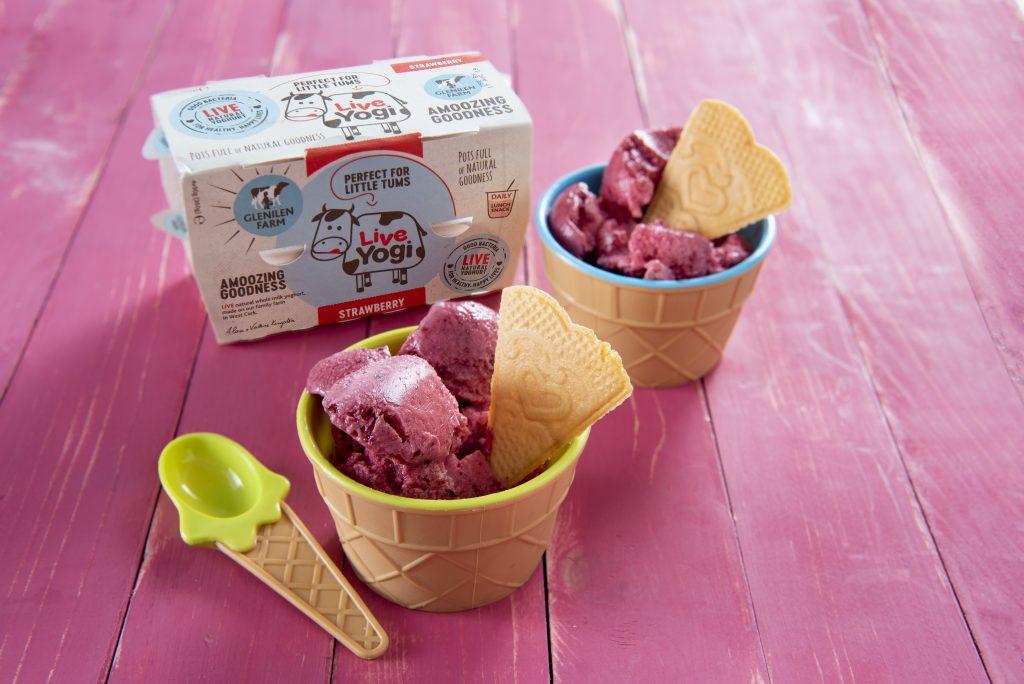 Homemade Frozen Yoghurt Sorbet
